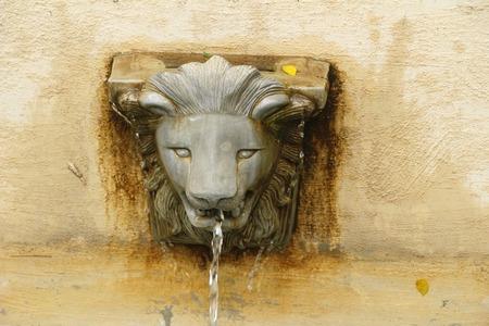 Lion statue spitting water vintage style in garden