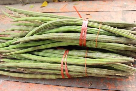 Moringa oleifera or drumstick vegetable