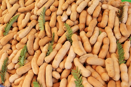 Tamarind fruit is delicious at street food