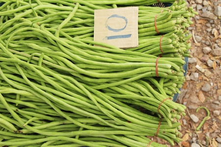 Long bean for cooking at street food
