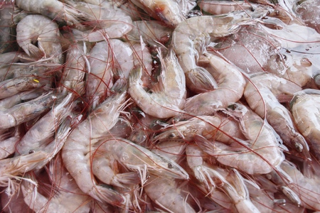 Fresh shrimp for cooking at street food 写真素材