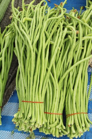 Long bean for cooking at street food Foto de archivo - 122689897