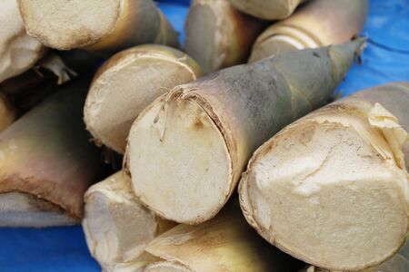 Sweet bamboo shoot for cooking at market