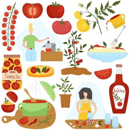 Ingrediente di pomodoro in diversi piatti, illustrazione vettoriale di cucina casalinga. Cibo fatto in casa, piatto vegetariano sano, cucina italiana. Set di icone e adesivi in stile piatto moderno. Salsa di pomodoro e pasta Vettoriali
