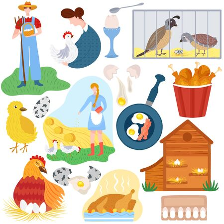 Poultry farm, chicken product eggs and meat, vector illustration. Set of isolated stickers in flat cartoon style, organic chicken meat from local farm. Quail eggs for breakfast, rural poultry business
