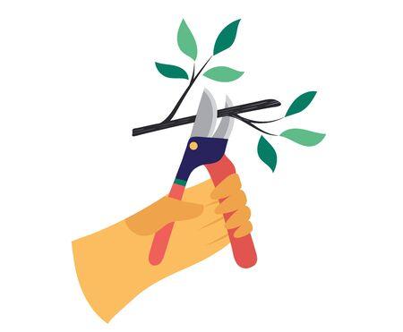 Cutting bush in kitchen garden and kaleyard concept and vector illustration on white background. Gardener work on shrub, remove excess leave. Ilustração