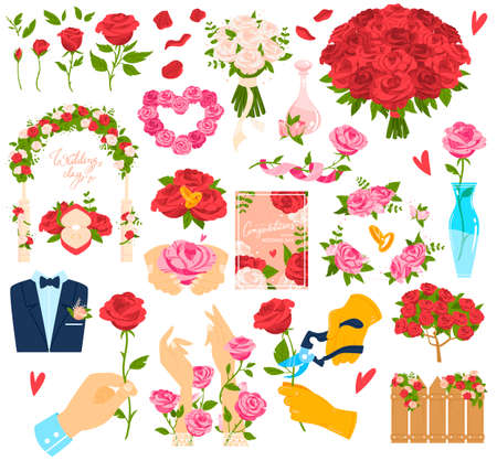 Rose flower beautiful bouquet vector illustration, flat cartoon floral collection of red pink flowering roses for design isolated on white Vettoriali