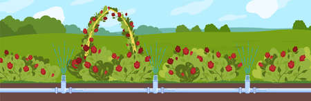 Garden watering vector illustration, cartoon flat underground automatic irrigating water supply pipe system, irrigation technology Illustration