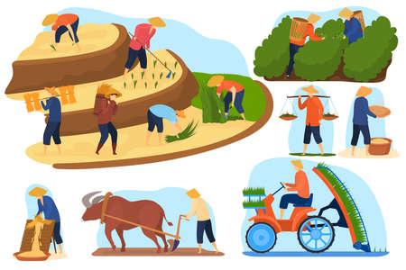 Asian farm rice fields vector illustration set, cartoon flat farmer people work on terraced agricultural rice plantations Vector Illustration