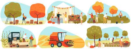 People gathering crops or seasonal harvest in garden, farmers in autumn, set of vector illustrations. Harvest market. 版權商用圖片 - 158368339