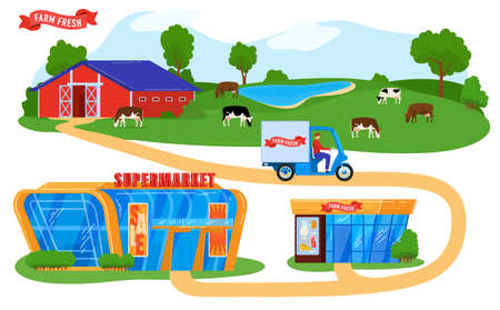 Farmers products supply chain vector illustration, cartoon courier on truck delivering farmer food to supermarket, grocery store