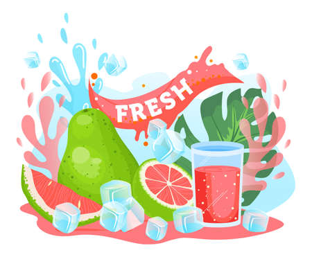Pomelo citrus juice vector illustration, cartoon flat fresh pink pomelo citrus juicy summer vitamin drink in glass and ice cubes