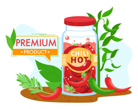 Hot chili pepper in jar food product vector illustration, cartoon flat pickled red chili peppers with spicy herb marinade in jar