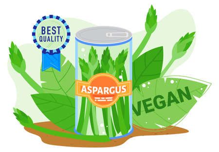 Asparagus farm agriculture product vector illustration, cartoon flat farmed best quality asparagus in can with fresh green leaves 版權商用圖片 - 158404233