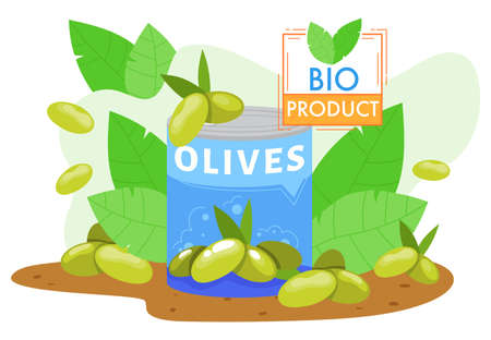 Olives farm agriculture product vector illustration, cartoon flat farmed green olive fruits in can with fresh olive tree branches