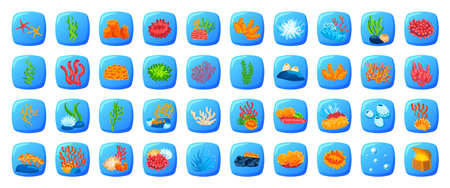 Fish game, marine set, ocean tropical seashell, isolated on white, art underwater world, in cartoon style vector illustration.
