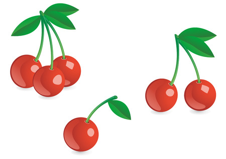 Appetizing fresh berries isolated on the white Vector