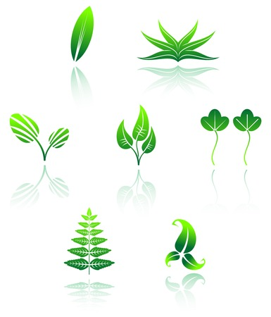 Set of leaves icon isolated on white Vector