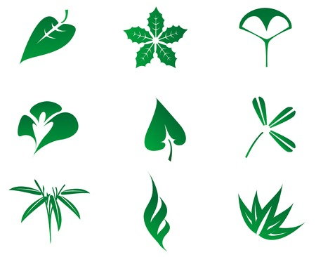 Set of leaves icons isolated on white Vector
