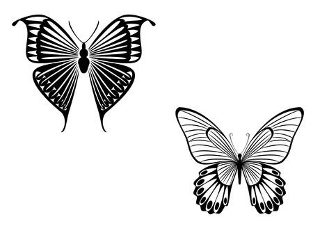 farfalla nera: Tatuaggi isolati di bella farfalla nero su bianco