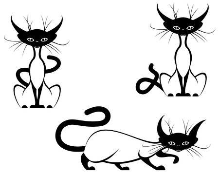 Funny domestic cats isolated on white in different poses Stock Vector - 5568133