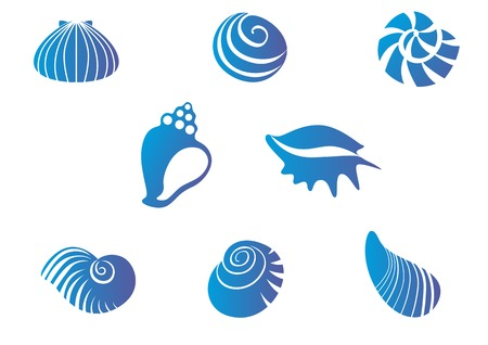Set of blue seashells isolated on white Vector