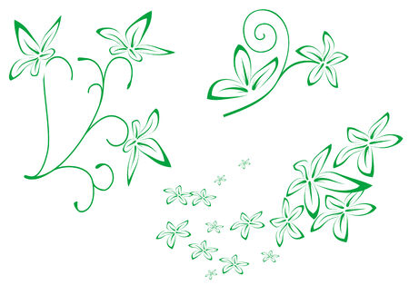 Floral decorations for design isolated on white Stock Vector - 5790336