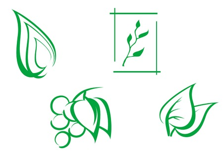 logo nature: Set of leaves symbols as a nature emblems Illustration