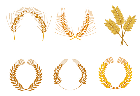Set of cereal wreaths as an agriculture concept Vector