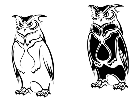 isolated owl: B�ho aislado en dos variaciones sobre fondo como un s�mbolo