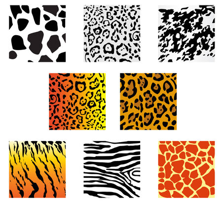 Set of animal fur and skin patterns for design Vector