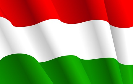 Flag of Hungary for design as a background or texture Vector