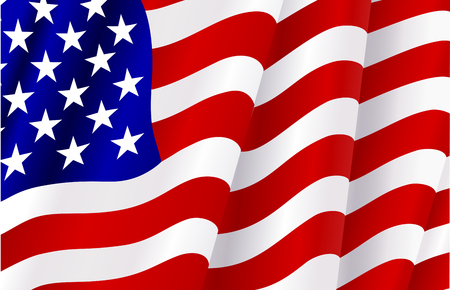 Flag of USA for design as a background or texture Vector