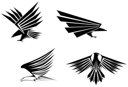halcones: S�mbolo de �guila aislado en blanco para el dise�o del tatuaje