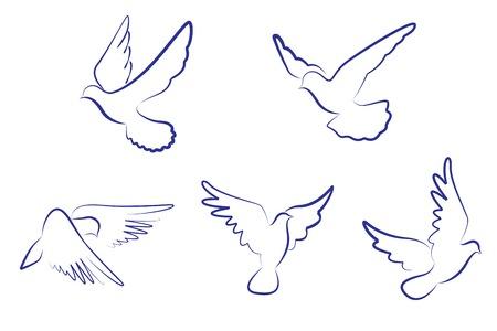 paloma caricatura: Conjunto de palomas blancas como un concepto de amor o de la paz