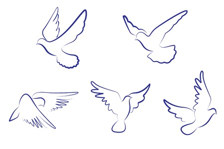 Set of white doves as a concept of love or peace Vector