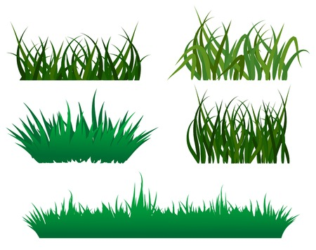 blades: Green grass elements for design and decorate