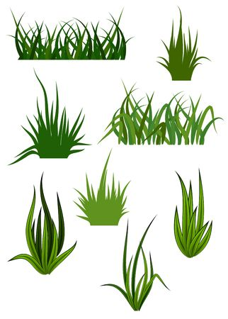 pastures: Green grass elements for design and decorate