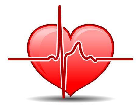 organos internos: Coraz�n con pulso gr�fico como un concepto de cuidado de la salud  Vectores