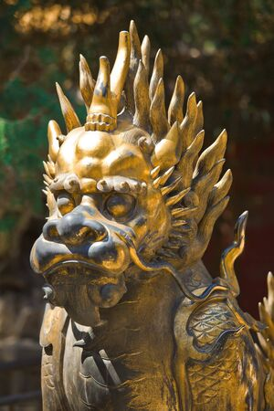 Bronze lion near the entrance of China  Emperor Garden in Forbidden City Stock Photo - 7219665