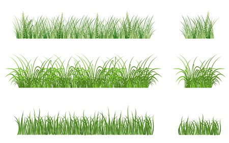 Green grass elements for design and decorate Stock Vector - 7248512