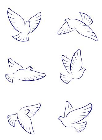 paloma caricatura: Conjunto de palomas blancas como un concepto de amor o de paz  Vectores
