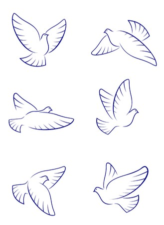 glide: Set of white doves as a concept of love or peace