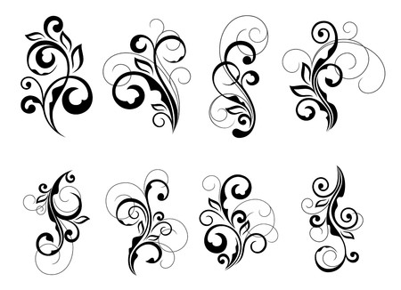 swirl: Set of beautiful floral elements isolated on white