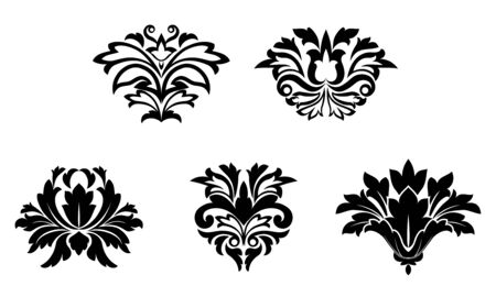 brocade: Flower patterns isolated on white for design