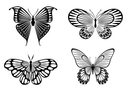 stylistic: Isolated tattoos of butterfly on white background
