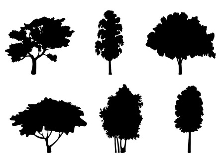 tree icon: Set of tree silhouettes for ecology design Illustration
