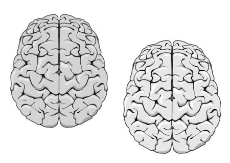 mentality: Human brain isolated on white as a concept of medicine Illustration