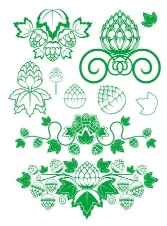 Mout en hop laat geïsoleerd op wit in bloemen stijl Vector Illustratie