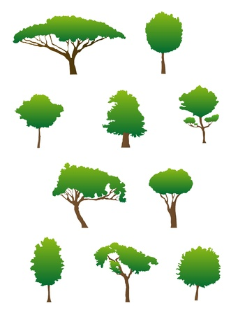 Set of green tree silhouettes for ecology design Vector